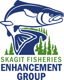 Team Skagit Fisheries Enhancement Group's avatar